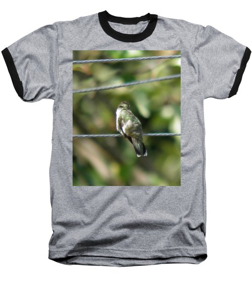 Baseball T-Shirt featuring the photograph Grooming Hummer by Nick Kirby