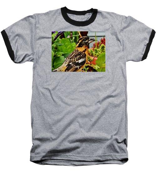 Baseball T-Shirt featuring the photograph Grosbeak Profile by VLee Watson