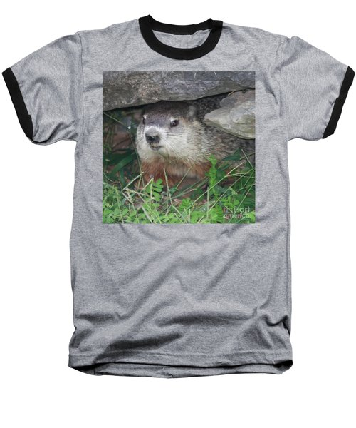 Groundhog Hiding In His Cave Baseball T-Shirt