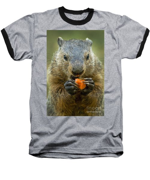 Groundhogs Favorite Snack Baseball T-Shirt by Paul W Faust -  Impressions of Light