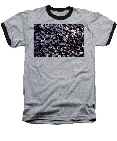 Group Of Mussels Close Up Baseball T-Shirt