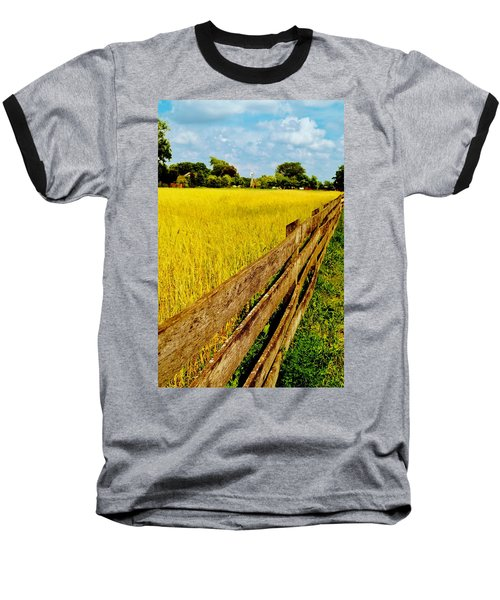 Growing History Baseball T-Shirt by Daniel Thompson