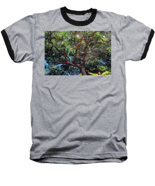 Growth Baseball T-Shirt by Terry Reynoldson