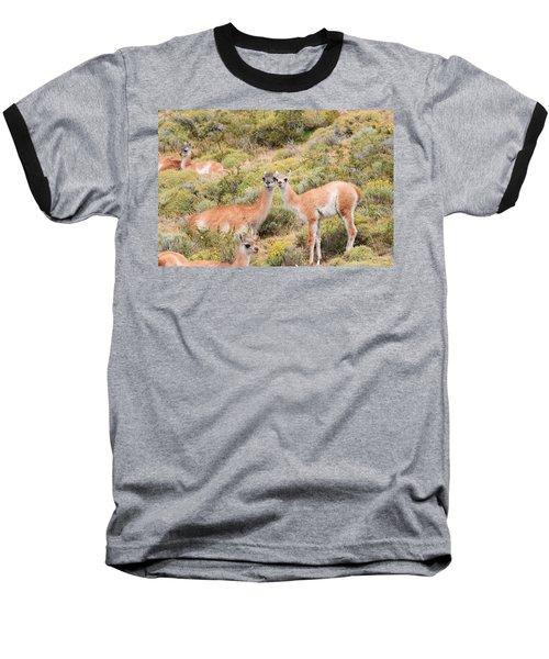 Guanaco Baseball T-Shirt