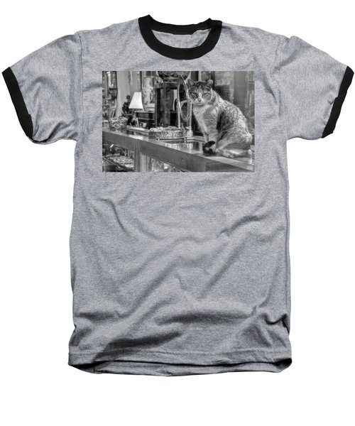 Guard Cat Baseball T-Shirt