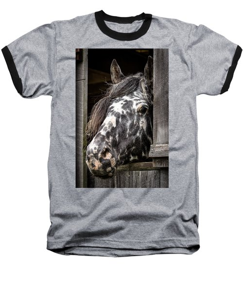 Guard Horse-what's The Password? Baseball T-Shirt