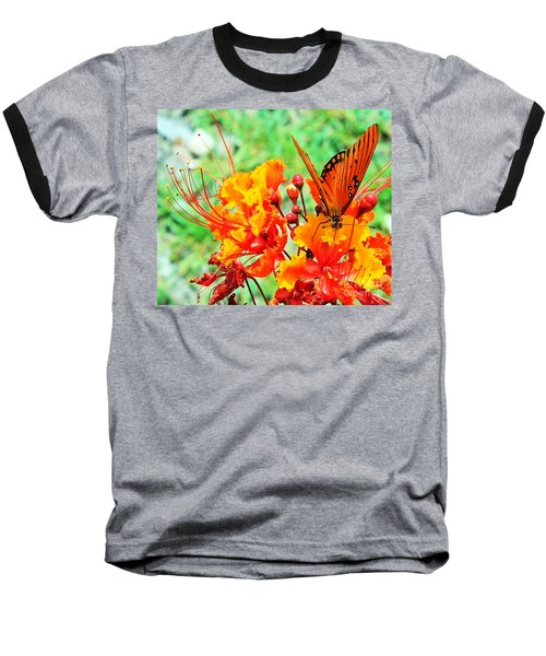 Gulf Fritillary Butterfly On Pride Of Barbados Baseball T-Shirt