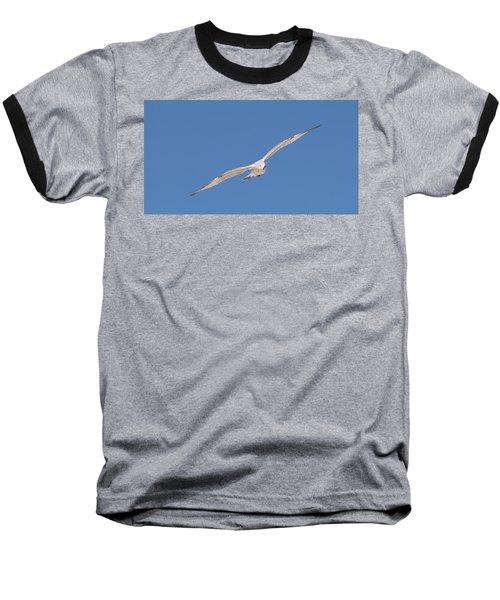 Gull In Flight - 2 Baseball T-Shirt