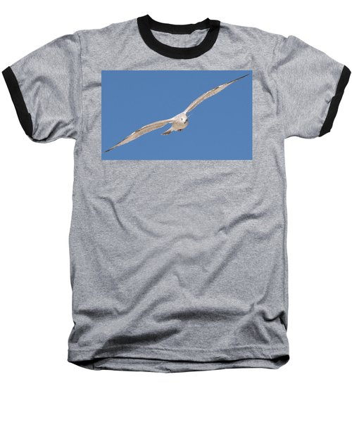 Gull In Flight  Baseball T-Shirt