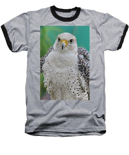 Gyrfalcon Baseball T-Shirt by Deborah Benoit