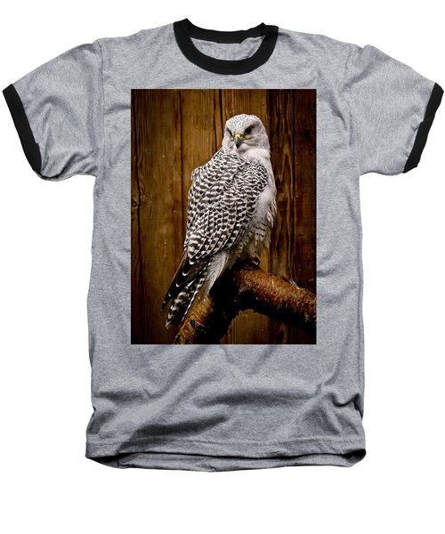 Gyrfalcon Perched Baseball T-Shirt by Steve McKinzie