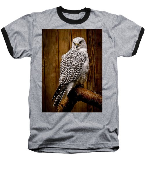 Gyrfalcon Perched Baseball T-Shirt