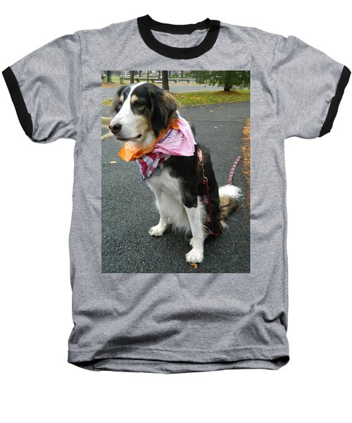 Baseball T-Shirt featuring the photograph Haley The Wonder Dog by Emmy Marie Vickers