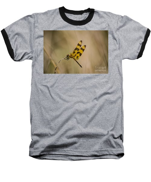 Halloween Pennant Dragonfly Baseball T-Shirt