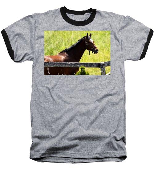 Handsom Horse Baseball T-Shirt