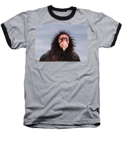 Handsome California Condor Baseball T-Shirt
