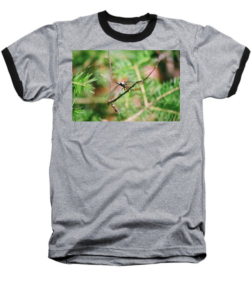 Baseball T-Shirt featuring the photograph Hangin' Out by David Porteus