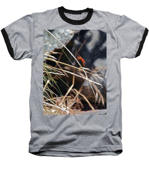 Baseball T-Shirt featuring the photograph Hanging On by Michele Myers
