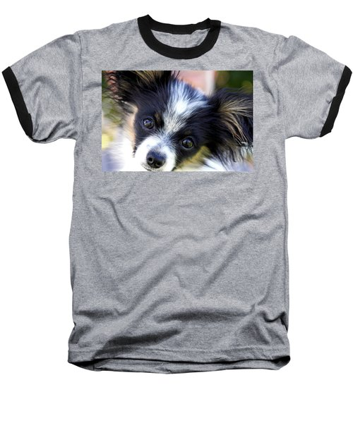 Baseball T-Shirt featuring the photograph Hanna The Papillon Puppy by Karon Melillo DeVega