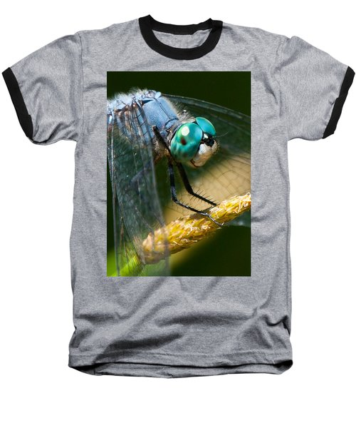 Happy Blue Dragonfly Baseball T-Shirt by Janis Knight