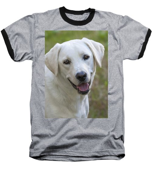 Baseball T-Shirt featuring the photograph Happy Lab by Stephen Anderson