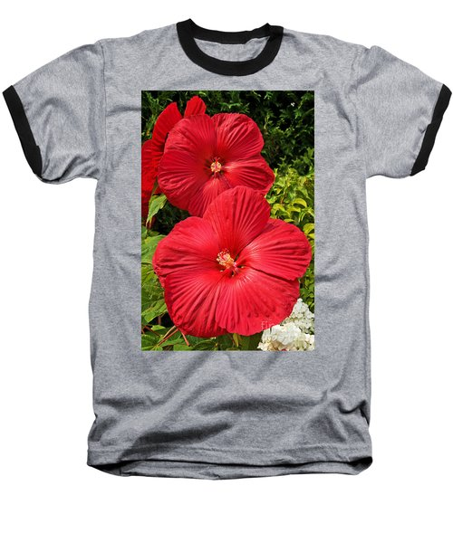 Hardy Hibiscus Baseball T-Shirt by Sue Smith