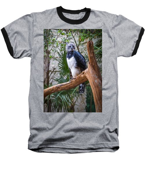 Baseball T-Shirt featuring the photograph Harpy Eagle by Ken Stanback