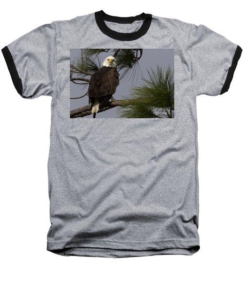 Harriet The Bald Eagle Baseball T-Shirt by Meg Rousher