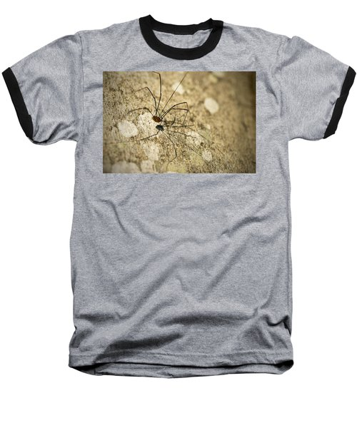 Baseball T-Shirt featuring the photograph Harvestman Spider by Chevy Fleet