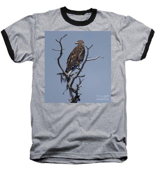 Hawk Eye Baseball T-Shirt