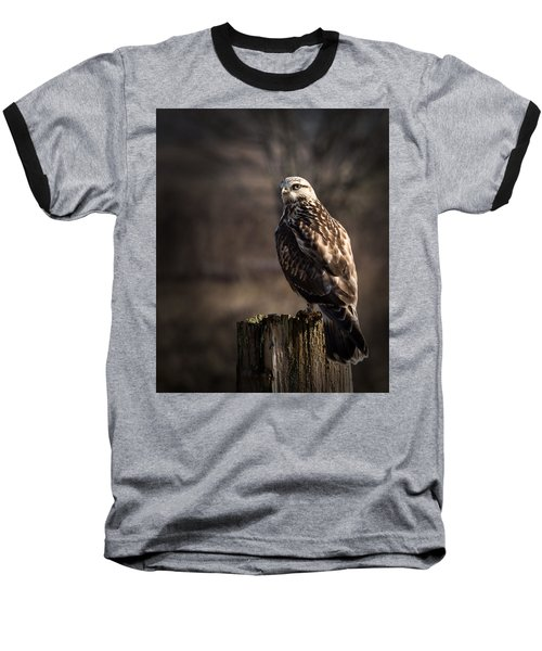 Hawk On A Post Baseball T-Shirt