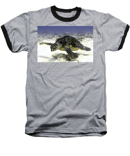 Hawksbill Caribbean Sea Turtle Baseball T-Shirt