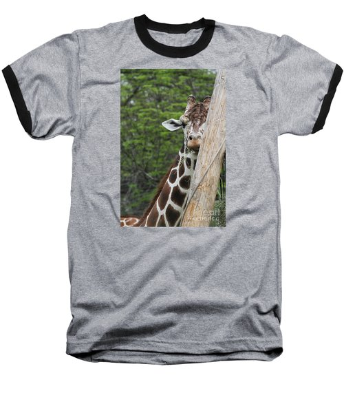 Baseball T-Shirt featuring the photograph Hay Not Just For Horses by Judy Whitton
