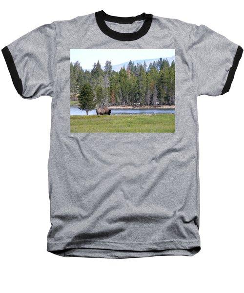 Hayden Valley Bison Baseball T-Shirt