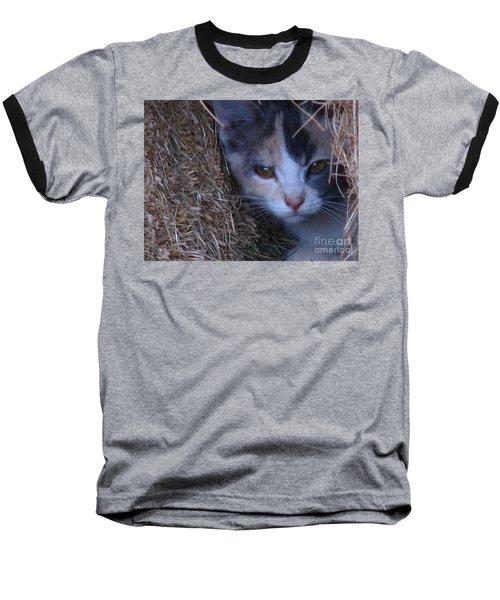 Haystack Cat Baseball T-Shirt