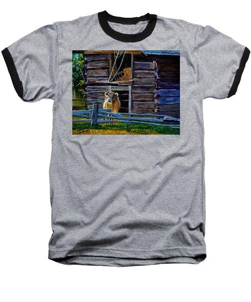 Hdemo2 Baseball T-Shirt