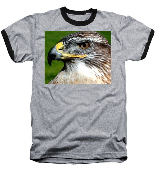 Head Portrait Of A Eagle Baseball T-Shirt