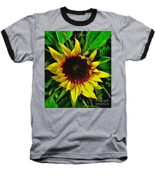 Helianthus Annus - Sunnydays Baseball T-Shirt
