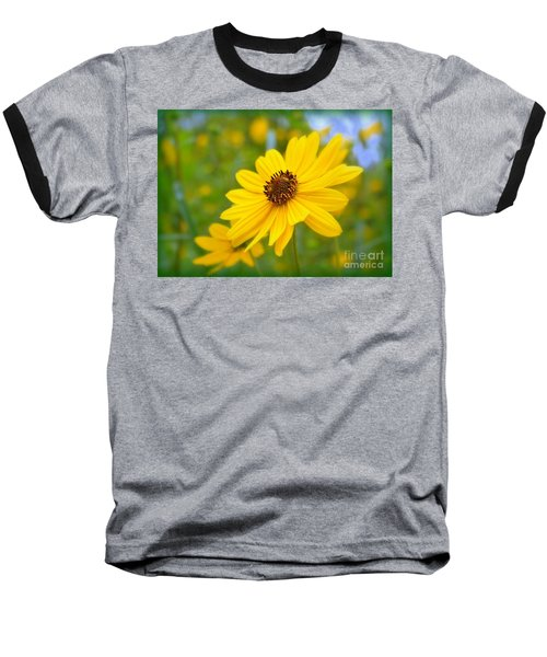 Helianthus Baseball T-Shirt