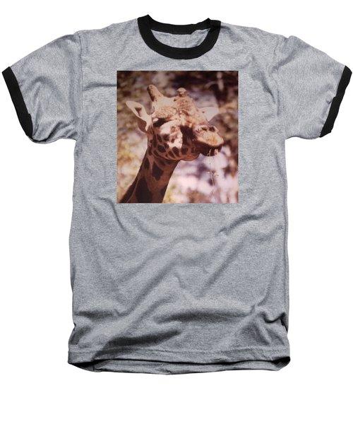 Velvety Giraffe Baseball T-Shirt by Belinda Lee