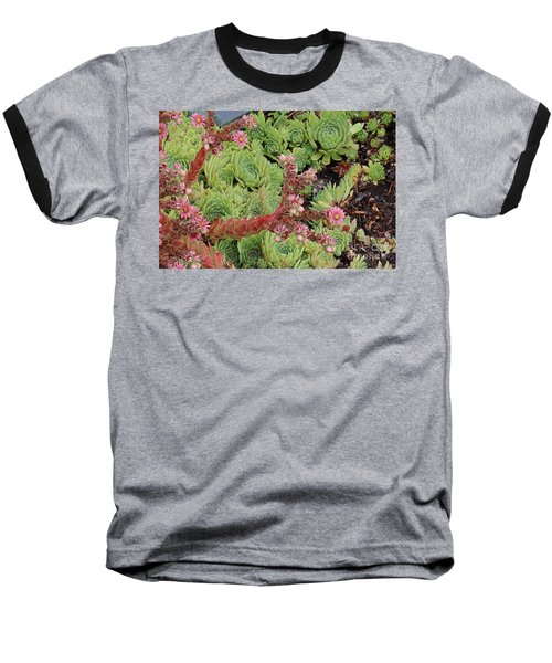 Hen And Chick In Bloom Baseball T-Shirt