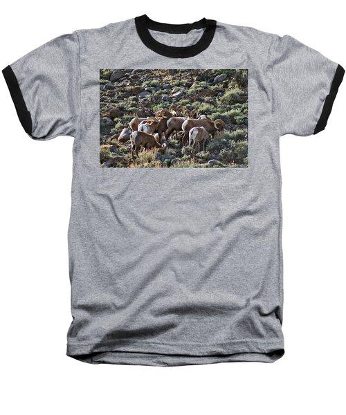 Herd Of Horns Baseball T-Shirt