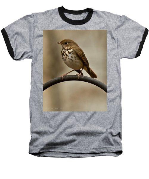 Baseball T-Shirt featuring the photograph Hermit Thrush by Robert L Jackson