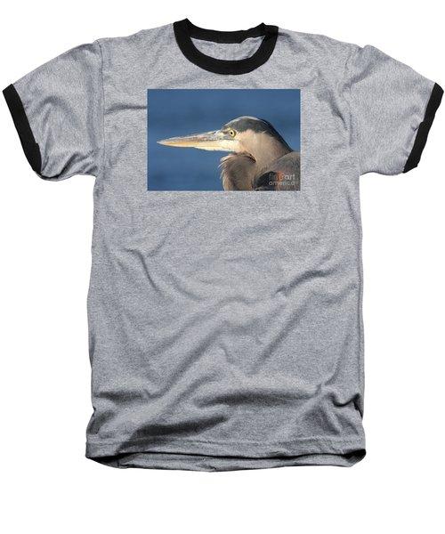Heron Close-up Baseball T-Shirt by Christiane Schulze Art And Photography
