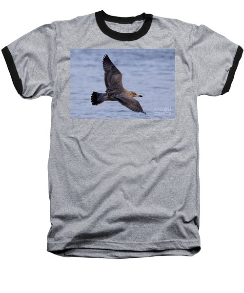 Baseball T-Shirt featuring the photograph Herring Gull In Flight Photo by Meg Rousher