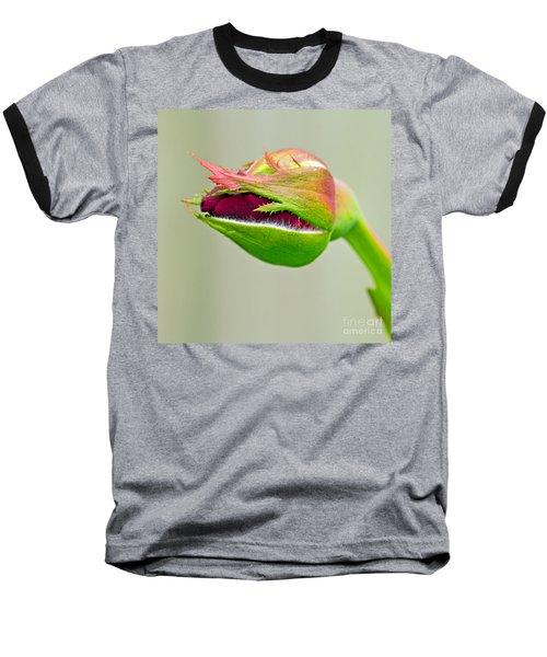 Hi Bud Baseball T-Shirt