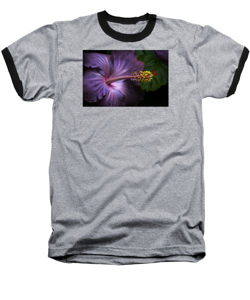 Hibiscus Bloom In Lavender Baseball T-Shirt by Julie Palencia