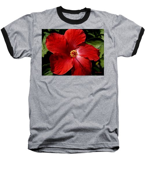 Hibiscus Landscape Baseball T-Shirt by Jeanette C Landstrom