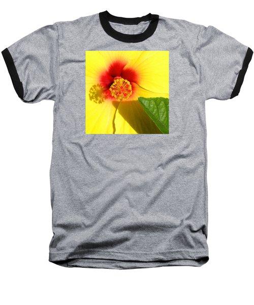 Hibiscus Shadows Baseball T-Shirt