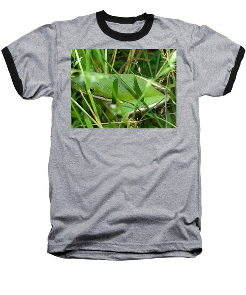 Hidden Frog Baseball T-Shirt by Fortunate Findings Shirley Dickerson